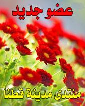 ◄♥♥ قسم فلسطين الحبيبة والأقصى المبارك ♥♥► Tpdgpg11